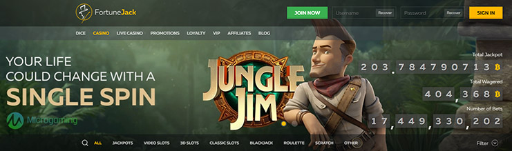 Fortunejack casino website